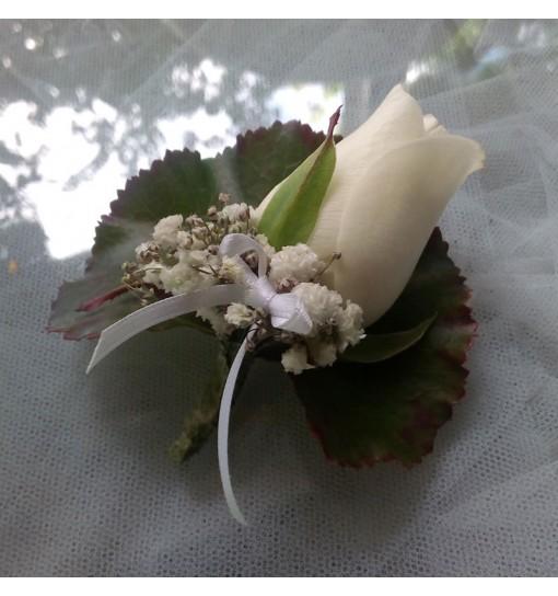 Prendido Rosa Blanca1